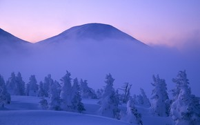 горы, облака, туман, снег, зима, деревья