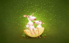 Mouse, Ratti, formaggio, verde