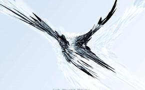 полет, сетка, птица