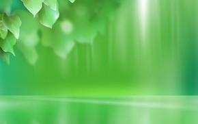 leaves, Green, minimalism