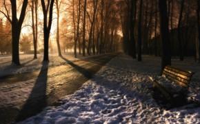парк, скамейка, зима, следы
