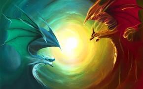 opposizione, Dragons, stella