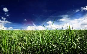 iarb, linie, nori