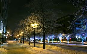 citt, inverno, semaforo, semaforo, neve, alberi